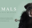 we_animals_libro