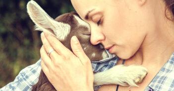 abbraccio-donna-agnello