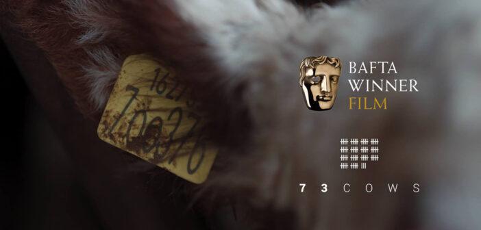 73-cows-premio-bafta-film