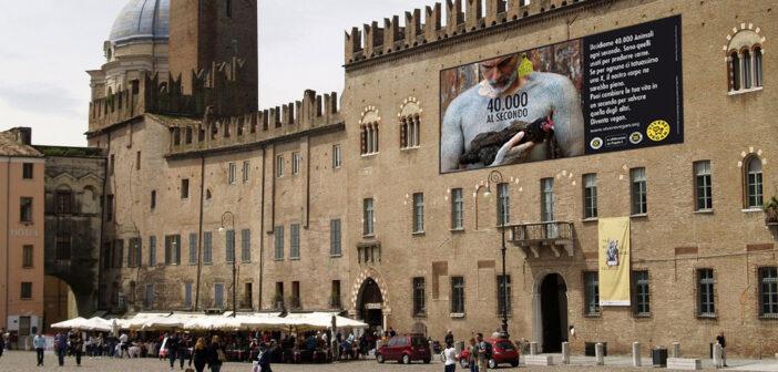 4 mega manifesti antispecisti a Mantova