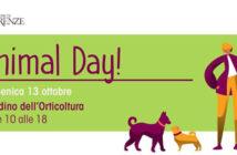 animal-day-2019