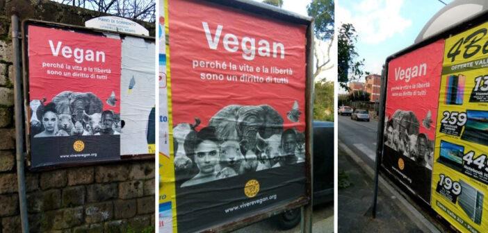 Adotta un manifesto antispecista per Piano di Sorrento