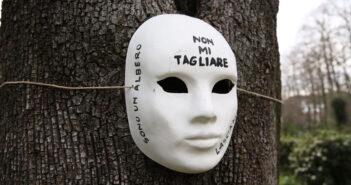 albero, protesta contro i tagli