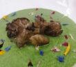agretti e funghi di paola lazzarini
